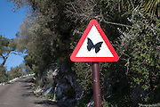 Road sign picture of a butterfly Rock nature reserve Gibraltar, British terroritory in southern Spain