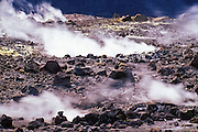 Steam rising from rim of the Halema'uma'u Crater, Kilauea Caldera, Hawaii Volcanoes National Park, Hawaii