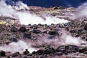 Steam rising from rim of the Halema'uma'u Crater, Kilauea Caldera, Hawaii Volcanoes National Park, Hawaii