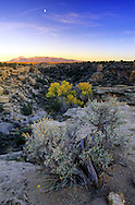 Overlooking LIttle Ruins Canyon with Shiprock Peak in the background at sunset in fall. Hovenweep National Monument, Utah.