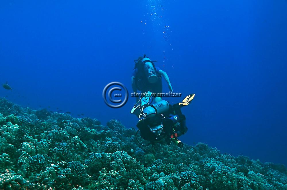 Dive Molokini, Maui Hawaii
