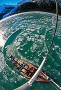 Yacht breaking ice, west arm Seno Pia, Isla Grande, Cordillera Darwin, Tierra del Fuego, Chile.