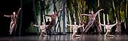 The Birmingham Royal Ballet <br /> Three Short Story Ballets (mixed Bill) <br /> at Birmingham Hippodrome, Birmingham, Great Britain <br /> Rehearsal 21st June 2017 <br /> <br /> Le Baiser de la f&eacute;e <br /> Choreography by Michael Corder<br /> <br /> Music: Igor StravinskyDesigns: John MacfarlaneLighting: Paule Constable<br /> <br /> <br /> <br /> <br /> <br /> <br /> <br /> Photograph by Elliott Franks <br /> Image licensed to Elliott Franks Photography Services