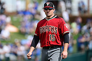 GLENDALE, AZ - MARCH 05:  Phil Gosselin #15 of the Arizona Diamondbacks warms up prior to the spring training game against the Los Angeles Dodgers at Camelback Ranch on March 5, 2016 in Glendale, Arizona.  The Dodgers won 7-2.  (Photo by Jennifer Stewart/Getty Images) *** Local Caption *** Phil Gosselin