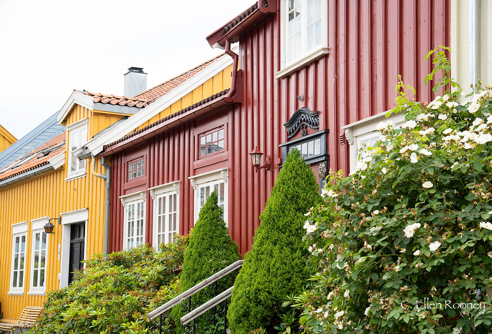 Brightly colour wooden houses in the Mollenberg district of Tronheim, Trondelag, Norway