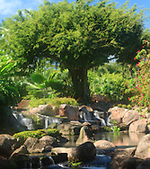 Landscape and water, Lihue,Kauai Hawaii, Marriott Resort,waterfall