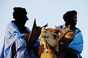 Tuareg man on his camel in Timbuktu during the 2010 edition of the Festival au Désert