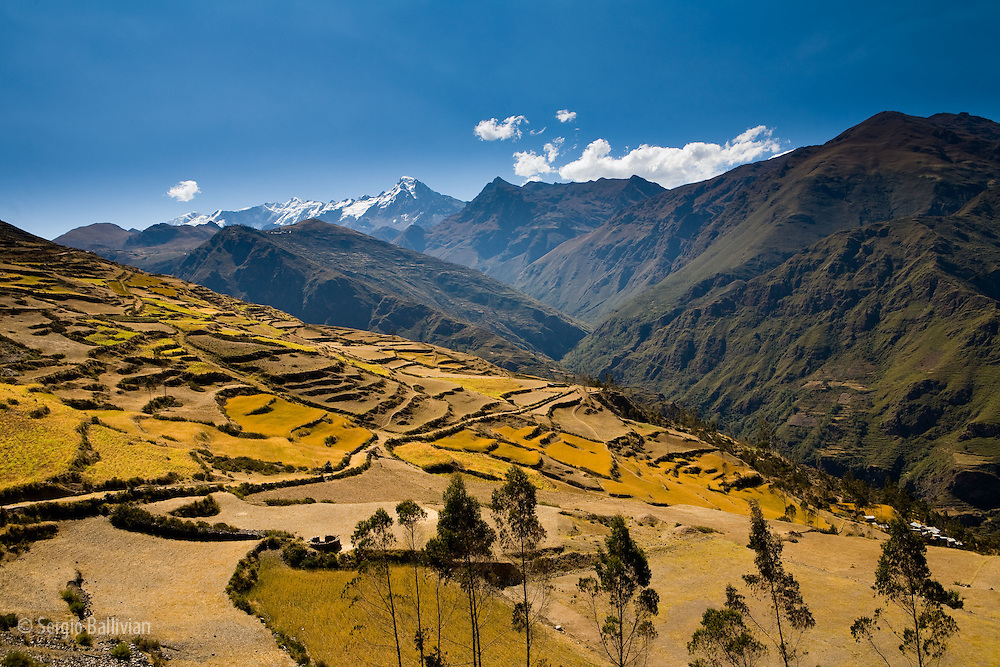 The steep terraced  mountainsides are used for agriculture in the Apolobamba Range of the Andes in western Bolivia in the middle of winter.  Mt. Akhmani is seen in the distance and is considered sacred by the local Kallawaya spiritual and herbal healers that originate from the town of Curva.