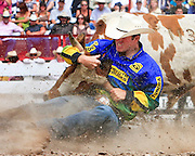 Colorado cowboy Josh Peek brings his steer to the ground in the Steer Wrestling competition at the 2009 Cheyenne Frontier Days.
