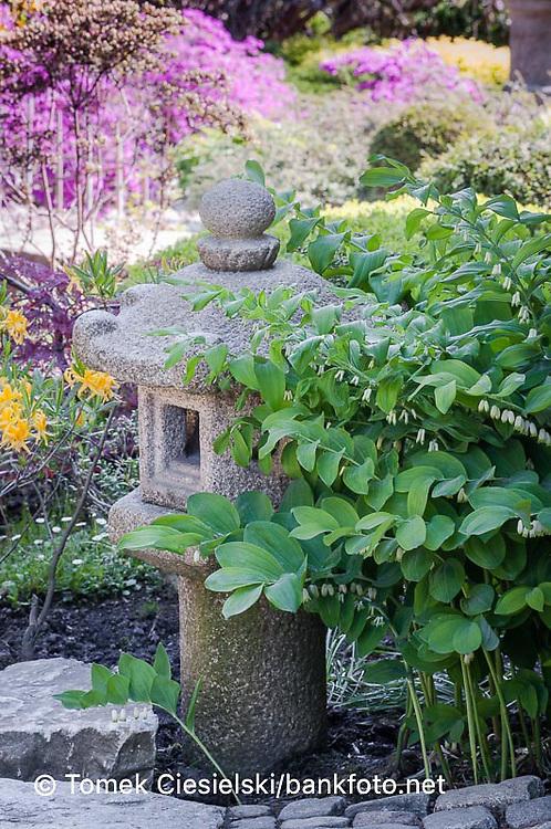 Stony lantern in japanese garden