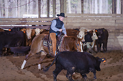 April 30 2017 - Minshall Farm Cutting 2, held at Minshall Farms, Hillsburgh Ontario. The event was put on by the Ontario Cutting Horse Association. Riding in the Open Class is Brian Kelly on The Reyl Slim Shady owned by Eric Bouchard.