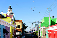 The colorful Bo-Kaap neighborhood of Capetown, South Africa. © Brett Wilhelm