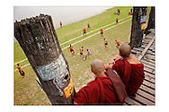 LARGE version - 12&quot;X8&quot; (30X20 cm) <br />