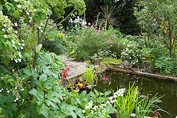 The pond area with angelica and primulas in the foreground