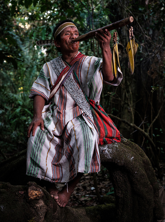 PUERTO MALDONADO, PERU - CIRCA SEPTEMBER 2019: Portrait of indigenous man of the tribe Machiguenga in the Peruvian Amazon.