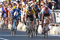 Sykkel , Arrival Sprint, CAVENDISH Mark (GBR) Dimension Data, Yellow Leader Jersey,  KRISTOFF Alexander (NOR) during the 15th Tour of Qatar 2016, Stage 5, Sealine Beach Resort - Doha Corniche (114,5Km), on February 12, 2016 - Norway only