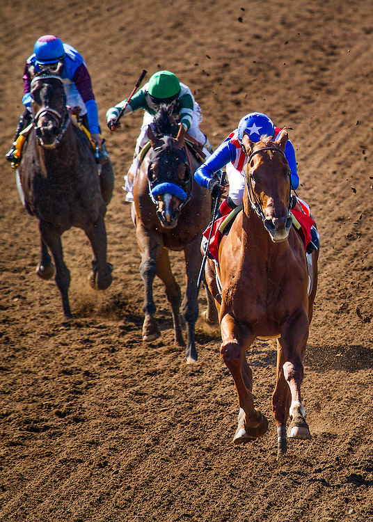 April 04 2015: Dortmund with jockey Martin Garcia up wins The GI Santa Anita Derby at Santa Anita Park in Arcadia CA. Alex Evers/ESW/CSM