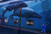Wyland Whale Mural, Bay Boulevard, Newport