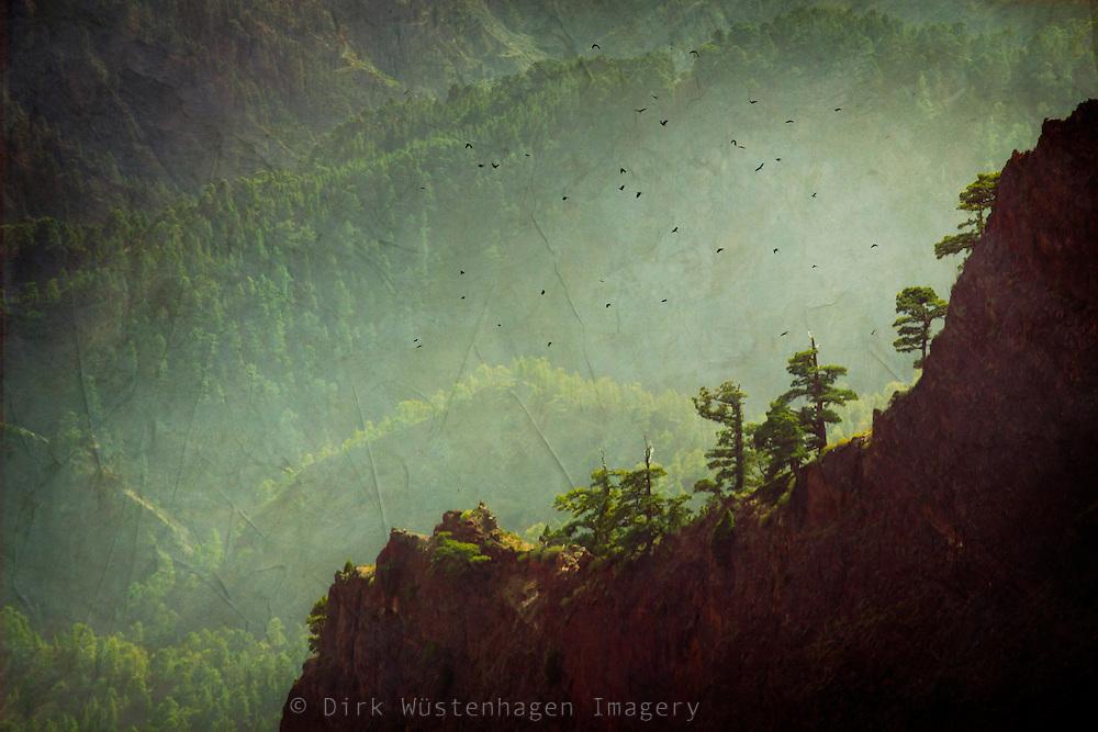 Blick auf Wälder und Bergrücken der Caldera de Taburiente, La Palma, Kanarische Inseln, Spanien