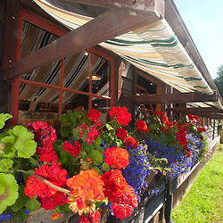 Overflowing Flower Boxes at Orcas Island Artworks, Orcas Island, San Juan Islands, Washington, US