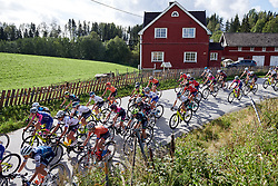 The peloton speed by during Ladies Tour of Norway 2019 - Stage 2, a 131 km road race from Mysen to Askim, Norway on August 23, 2019. Photo by Sean Robinson/velofocus.com