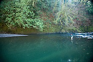 Trask River Fly Fishing Photos - Stock images