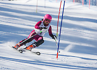 Piche Open Slalom at Gunstock.  U12 1st run.  ©2014 Karen Bobotas Photographer
