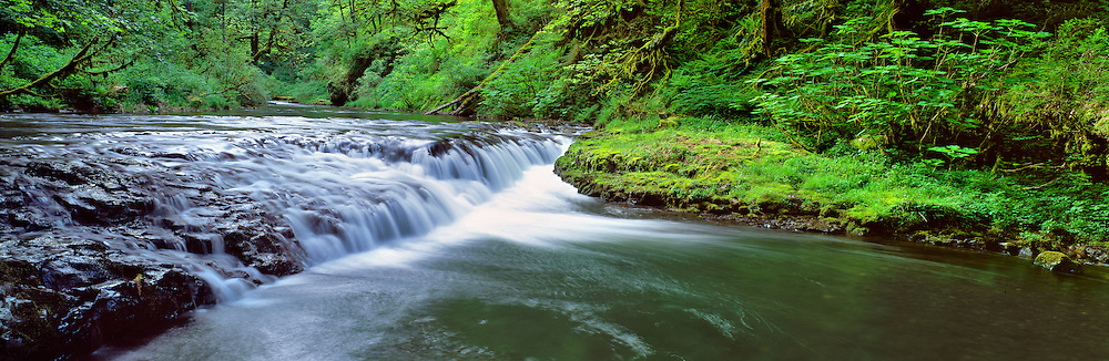 Silver Creek cascades peacefully through Silver Falls S.P., Oregon. ©Ric Ergenbright