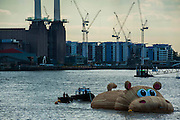 'HippopoThames' arrives at its destination with Battersea Power Station in the background - a 21-metre-long hippo sculpture, by Dutch artist Florentijn Hofman (best known for his Rubber Duck installation) is towed upriver to Nine Elms on the South Bank. It is his first UK commission Stepped access to the foreshore, near St George's Tower,  will be available for three hours a day at low tide throughout September.