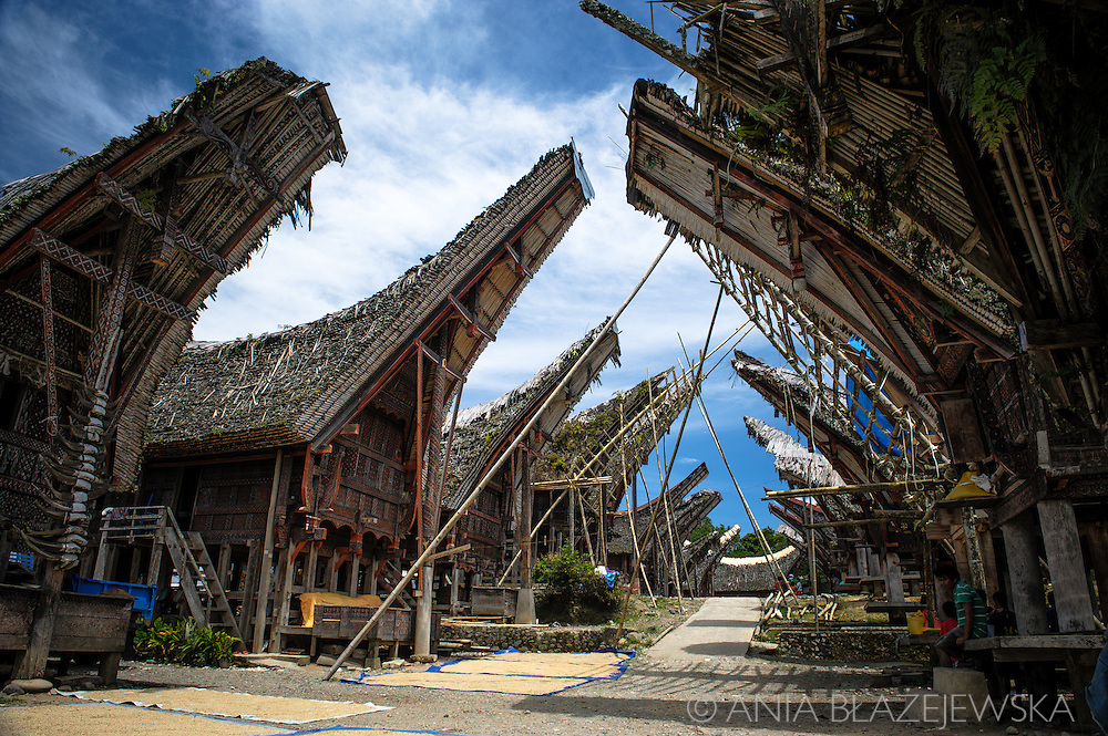 Indonesia, Sulawesi, Tana Toraja. Palawa - traditional Torajan village.<br />