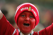 A young Welsh rugby fan on children in need night. Wales v Canada, Invesco Perpetual series 2008 rugby international at the Millennium Stadium in Cardiff on Friday 14th November 2008.   pic by Andrew Orchard, Andrew Orchard Sports Photography,