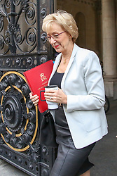 © Licensed to London News Pictures. 14/11/2018. London, UK. Andrea Leadsom - Lord President of the Council and Leader of the House of Commons arrives in Downing Street to attend a Brexit Cabinet Meeting. Ministers will discuss, agree and vote on Brexit deal. Photo credit: Dinendra Haria/LNP