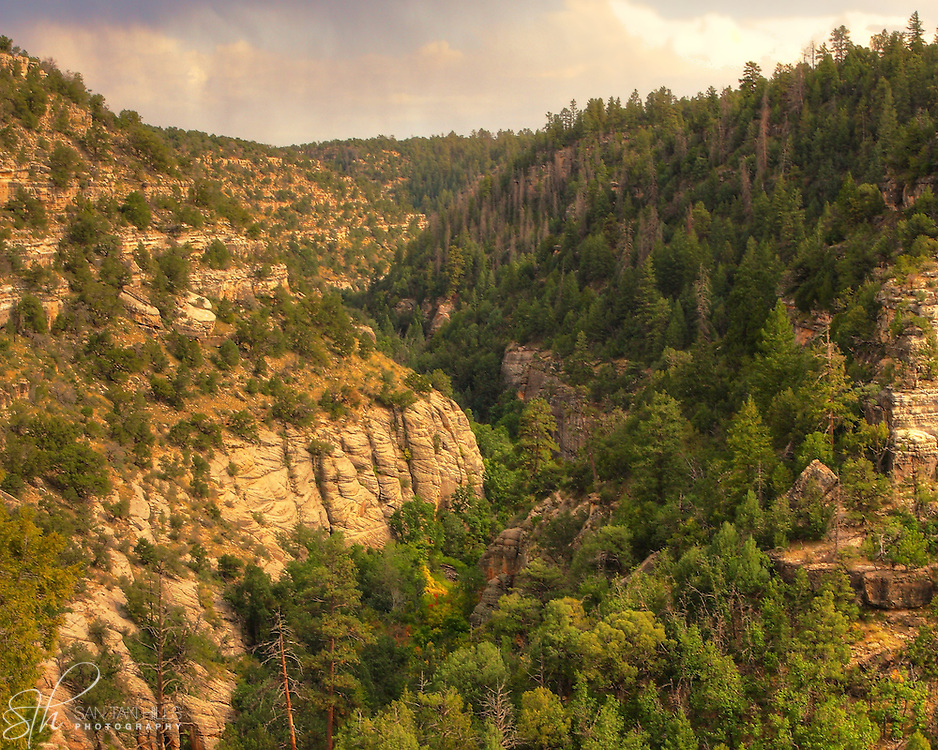 The sun paints the canyon walls of Walnut Canyon in warm majestic tones