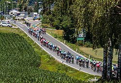 05.07.2017, Altheim, AUT, Ö-Tour, Österreich Radrundfahrt 2017, 3. Etappe von Wieselburg nach Altheim (226,2km), im Bild Peloton // Peloton during the 3rd stage from Wieselburg to Altheim (199,6km) of 2017 Tour of Austria. Altheim, Austria on 2017/07/05. EXPA Pictures © 2017, PhotoCredit: EXPA/ JFK