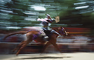 "Hiroyasu Muratea writing ""horse"" backwards in chinese a demonstration of riding skill  at the Fujinomori Matsuri (festival) Fujinomori Jinji Shrine. Kyoto, Japan"
