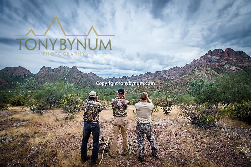 hunting photograph hunters glassing for desert sheep in sonora mexico