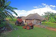 Tractor near Tacajo, Holguin, Cuba.