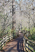 Corkscrew Swamp Sanctuary is accessible only by boardwalk.