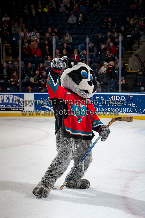 KELOWNA, CANADA - JANUARY 3: Rocky Racoon, the mascot of the Kelowna Rockets dances on the ice during intermission against the Tri-City Americans on January 3, 2017 at Prospera Place in Kelowna, British Columbia, Canada.  (Photo by Marissa Baecker/Shoot the Breeze)  *** Local Caption ***