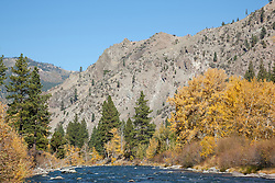 """Truckee River in Autumn 7"" - Photograph of the Truckee River, a mountain, pine trees  and yellow leaved cottonwood trees in Autumn."