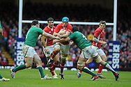 Justin Tipuric of Wales © is stopped by Ireland's Mike McCarthy ® and Cian Healy (l). RBS Six nations championship, Wales v Ireland at the Millennium stadium in Cardiff, South Wales on Saturday 2nd Feb 2013. pic by Andrew Orchard, Andrew Orchard sports photography,