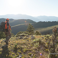 hunter hunting big game, deer hunter,