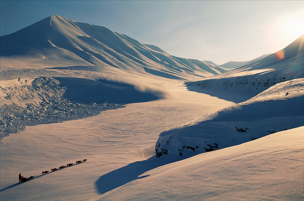 Dog sledding, Svalbard / Spitsbergen, Norway