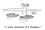 """I keep thinking it's Tuesday."""