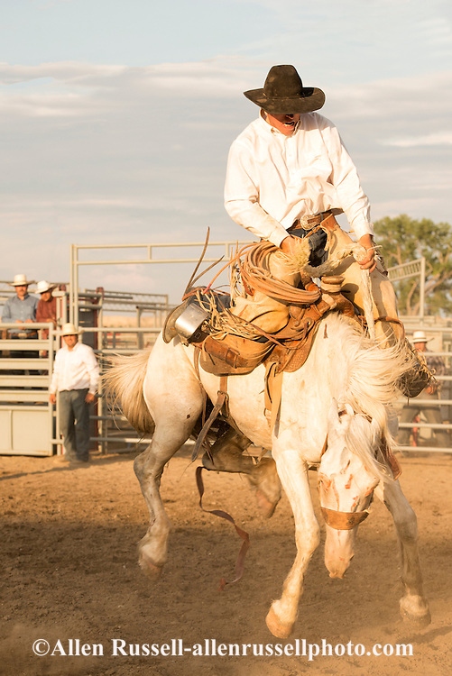 Will James Roundup, Ranch Rodeo, Ranch Bronc Riding, Mike Kiser, Hardin, Montana