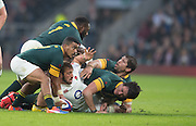 Twickenham, United Kingdom.  Sprigboks scrum half, Rudy PAIGE, Old Mutual Wealth Series match.: England vs South Africa, at the RFU Stadium, Twickenham, England, Saturday, 12.11.2016<br /> <br /> [Mandatory Credit; Peter Spurrier/Intersport-images]