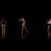 *Chamber Fantasy* | Choreographer & Director: Christopher Pilafian | Dance: Santa Barbara Dance Theatre