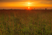 Sunrise on the tall grass prairie<br /> Tolstoi Tall Grass Prairie Preserve<br /> Manitoba<br /> Canada