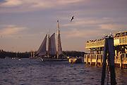 Sailboat, Key West, Florida<br />