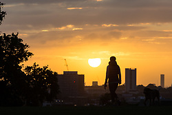London, September 11 2017. A dog walker on Primrose Hill as a new day breaks over the city. © Paul Davey